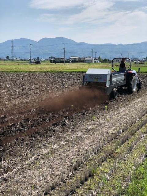 ゆうきりんりん豚糞堆肥、大豆農家さんにも好評です